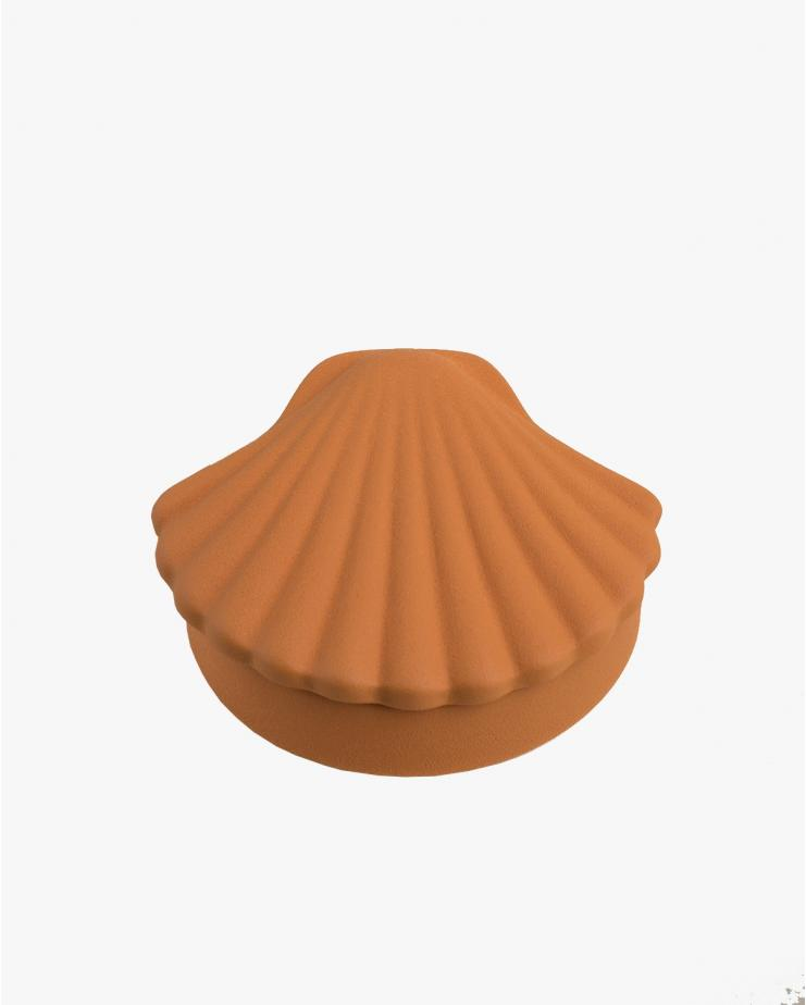 Seashell box Brown