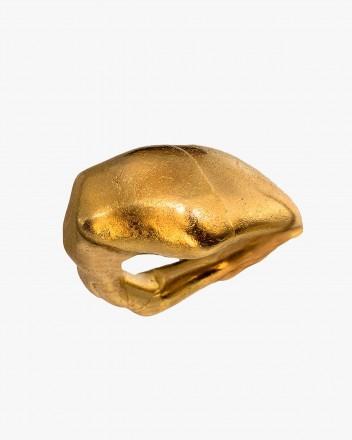 Valva Ring