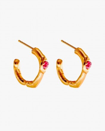 Aritos Earrings In Gold Plated