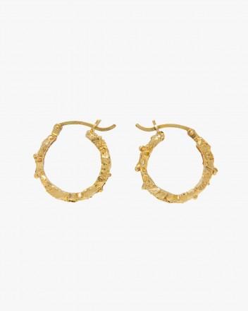 Rebutia small Earrings